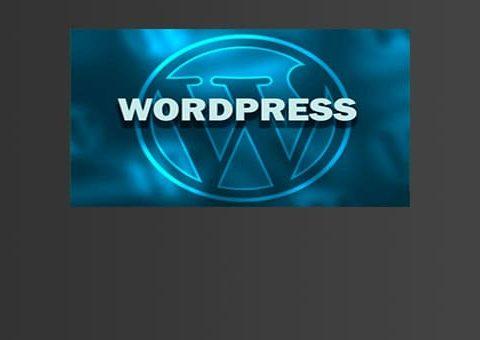 wordp1