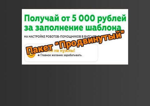 whatsaap-pro