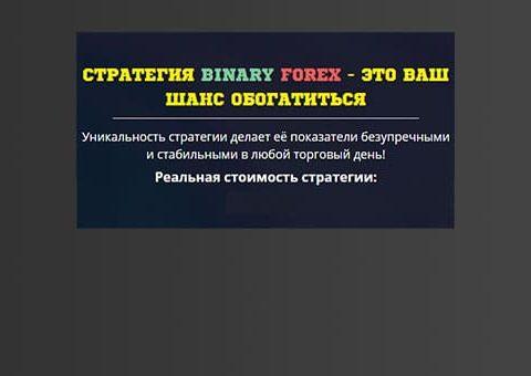 bin-forex